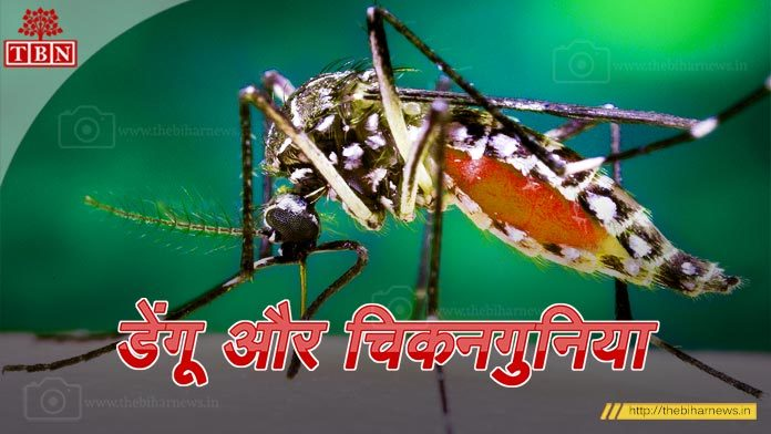 Bihar-Chikungunya-Dengue-the-bihar-news